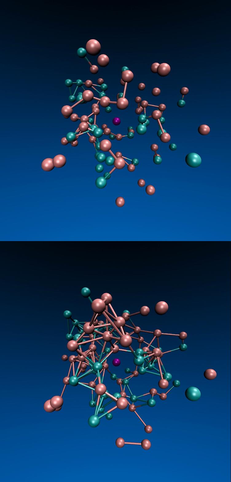 Simulação gráfica por Jeremy England e seus colegas, onde mostra um sistema de partículas confinadas dentro de um líquido viscoso do qual as partículas destacadas de turquesa são estimuladas por uma força. Depois de um tempo (de cima para baixo), a força provoca a formação de mais ligações entre as partículas. Imagem cedida por: Jeremy England