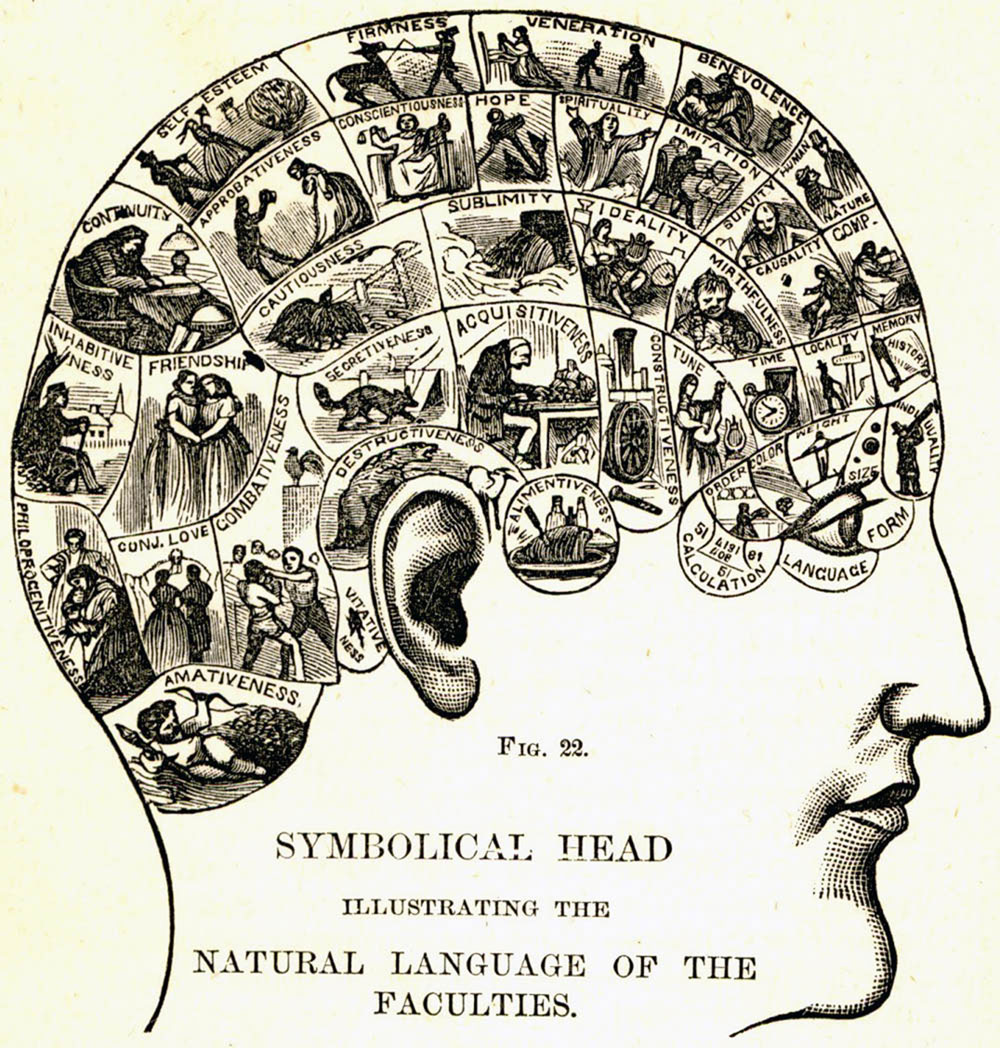 phrenological-chart