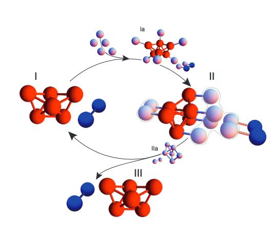 Cachos de Esferas Auto-Replicativas: De acordo com a nova pesquisa  da Harvard, o revestimento das superfícies das esferas podem causar a espontânea montagem em uma estrutura determinada, tal como o politetraedro (vermelho), o que faz que as esferas vizinhas percorram o mesmo caminho. Imagem por: Michael Brenner