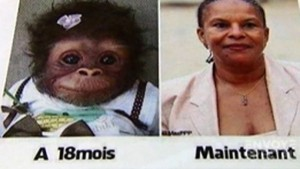 france-facebook-insult-monkey