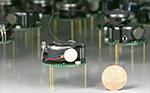 Pesquisadores criaram um agrupamento de 1000 robôs