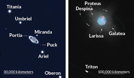 Os anéis e luas de Urano (à esquerda) brilham em uma imagem de 2002 do Very Large Telescope. Uma horda de satélites orbitam Netuno (à direita) em uma ilustração baseada em imagens do Telescópio Espacial Hubble tiradas um ano netuniano (164 anos terrestres) após a descoberta do planeta.