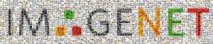 mosaic_sm_imagenet_stanford