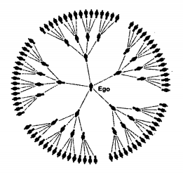 Rede Ramificada Pura