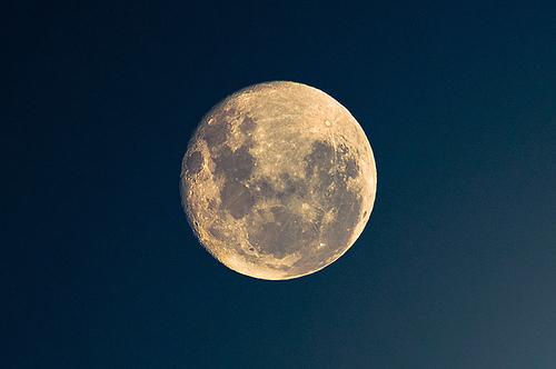 56697-bright-moonlight