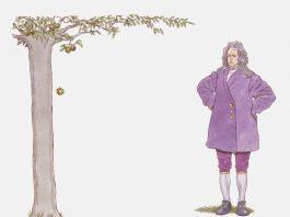Lei da gravitação universal: Newton e a queda da maçã.